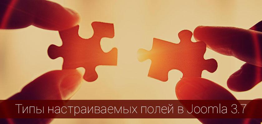 Краткий обзор всех кастомных полей Joomla! 3.7